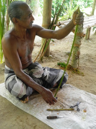 Making cinnamon in Sri Lanka
